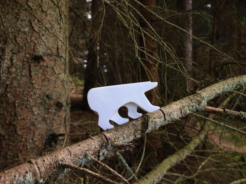 tree climber bear