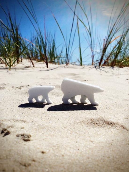 white sands bear